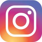 Instagram du chat urbain